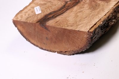 Board Holm Oak 320x160x60mm - SteiEi0137