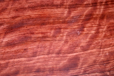 Bubinga E-Guitar Top bookmatched 560x180x11mm - Bubi0218
