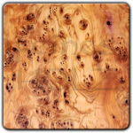 Preciuos wood of the month: Yew - 10% discount